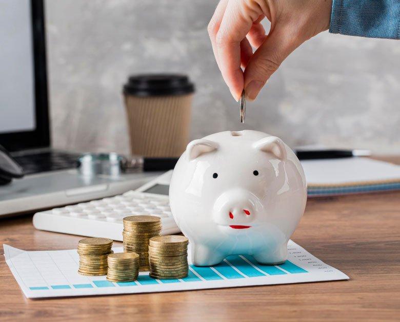 hand putting coin piggy bank growth chart